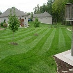 Lawn Care Darien CT