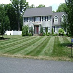 Lawn Maintenance Stamford CT