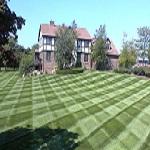 Lawn Service Greenwich CT