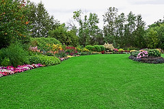 Lawn Service Stamford CT