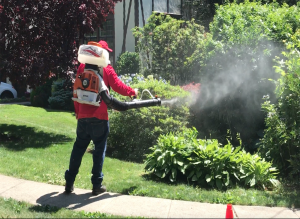 mosquito and tick control in darien ct